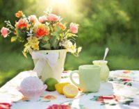 Tips voor een heerlijke zomer!